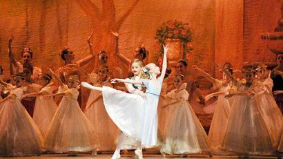 Greenwich Ballet Presents the Nutcracker